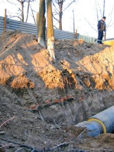 Фото 14. Под корнями деревьев видна линия кирпичей фундамента одного из бараков Центрального посёлка.