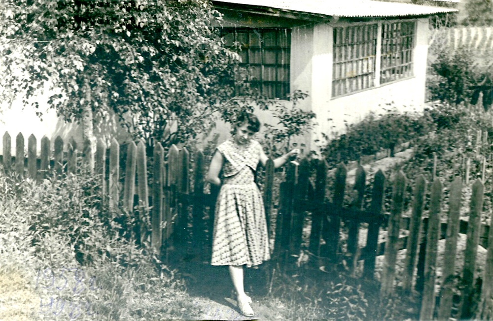 Рис. 2 Финский домик. Фото из архива Л. Плиско