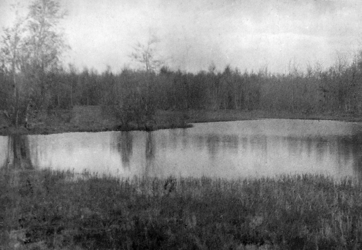 Вид на запруду реки Химка у посёлка Лобаново (ГАРФ Ф. А404. Оп. 2. Д. 69)